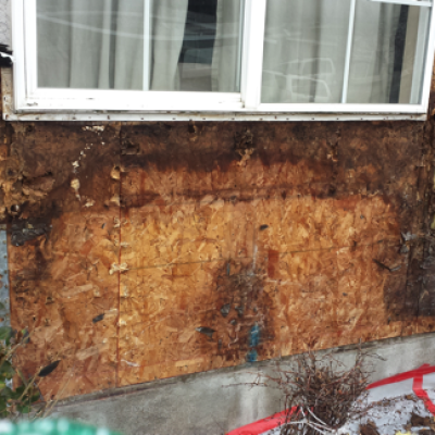 dry rot window